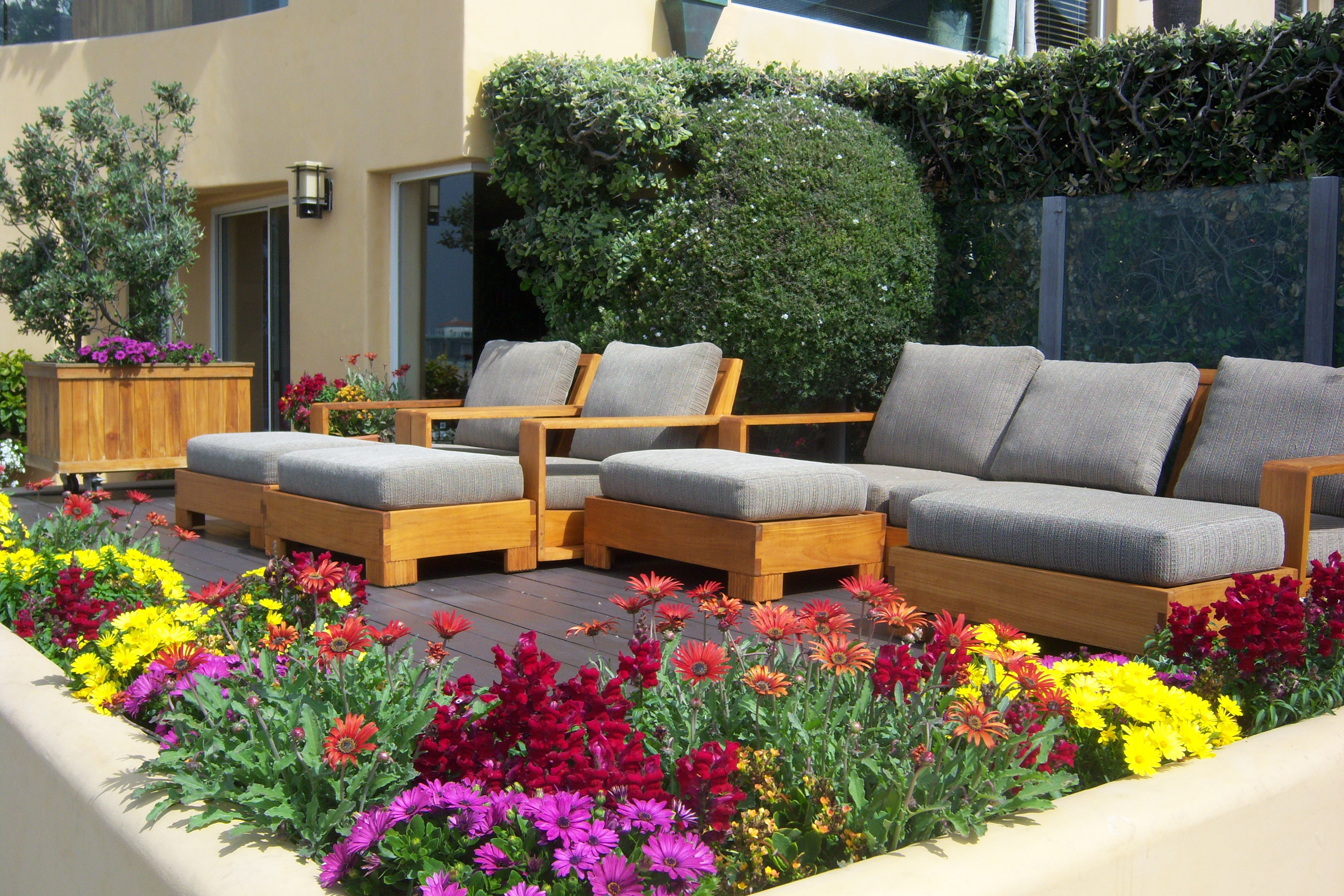 Ideas verdes para disfrutar arquitectura propiedades - Plantas para terraza con mucho sol ...