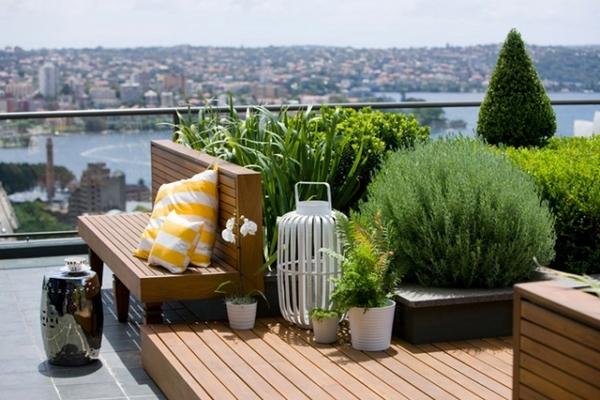 ... sol, es lo más recomendable. Pisos de madera o cemento, de calcáreos